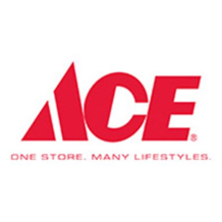 Infi Shop  Ace Hardware - AED 100