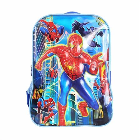 Picture of Spider-man Character School Bag