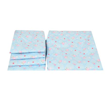 Picture of Blue floral Bedsheet
